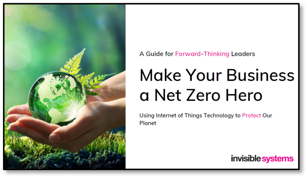 Invisible Systems - Make Your Business a Net Zero Hero